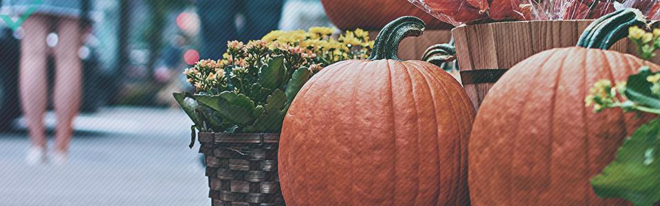 Etwa 48% der Italiener feiern Halloween.